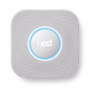 nest-smoke